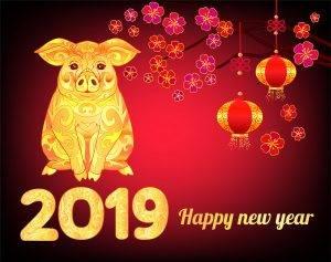 2019 CNY Image